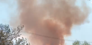 PHOTO: Social Media Post | Debs Park Fire Saturday August 14 2021, 4:00pm