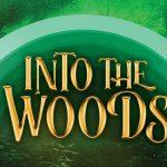 south-pasadena-news-07-26-19-into-the-woods-at-hollywood-bowl-02